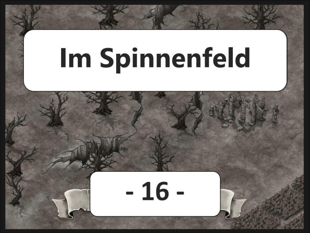Im Spinnenfeld